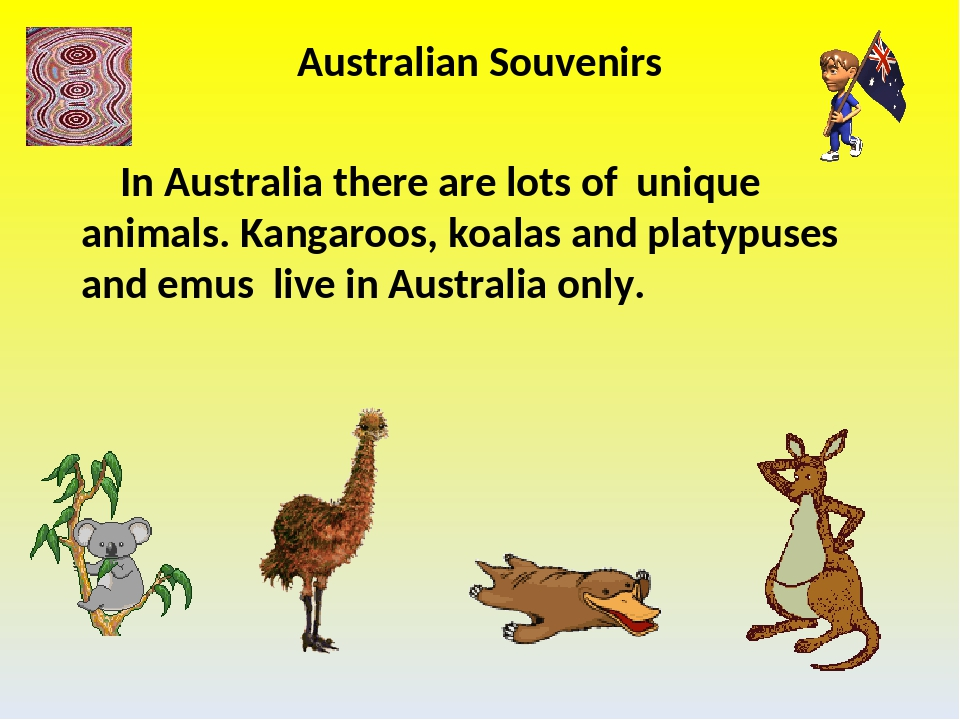 Australian Souvenirs In Australia there are lots of unique animals. Kangaroos...