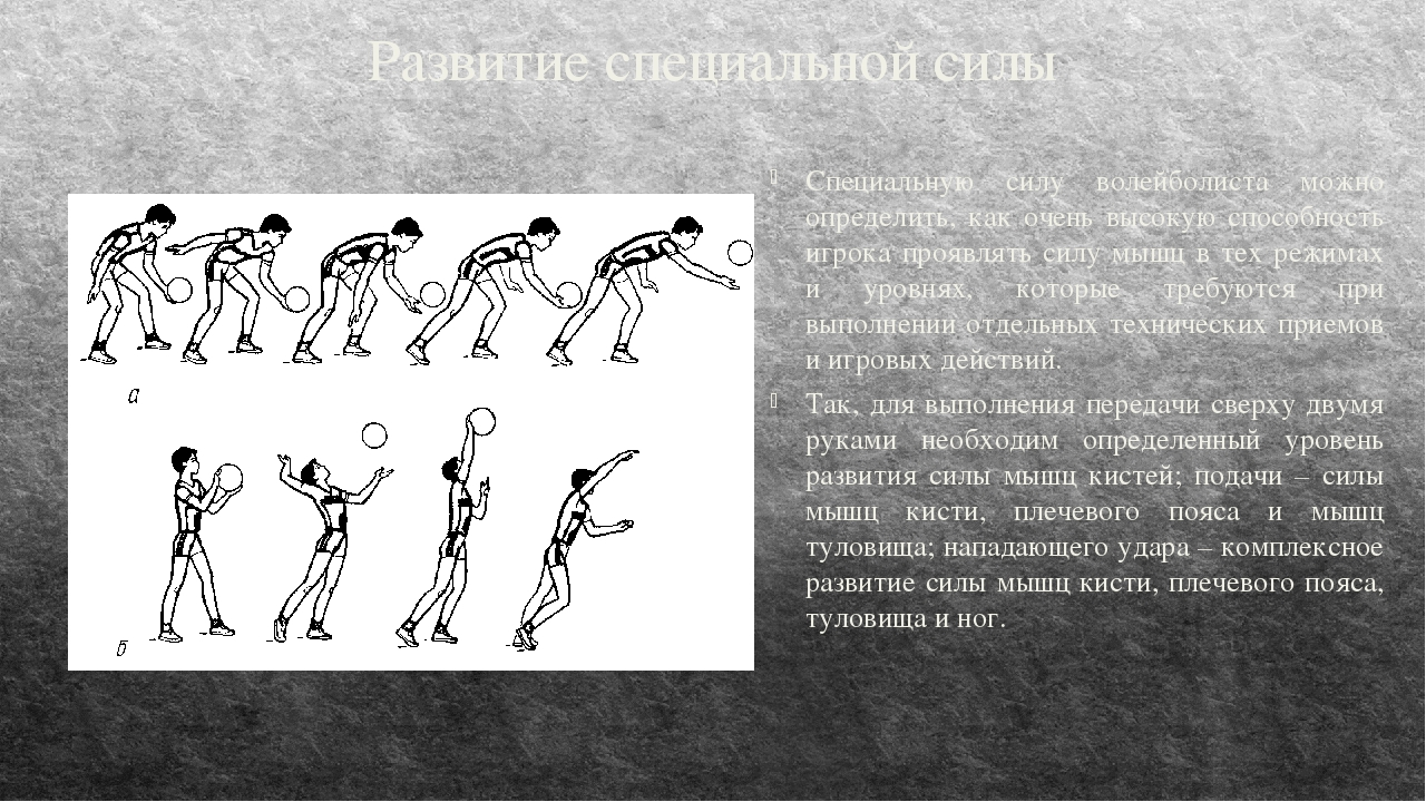 Развитие специальной силы Специальную силу волейболиста можно определить, как...