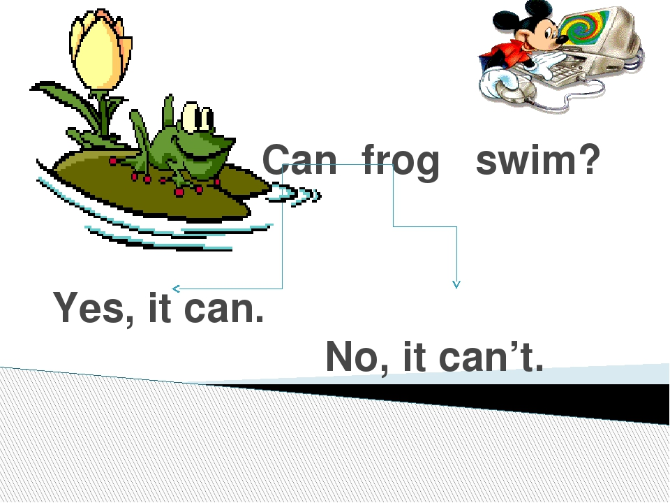 Can frog swim? Yes, it can. No, it can't.