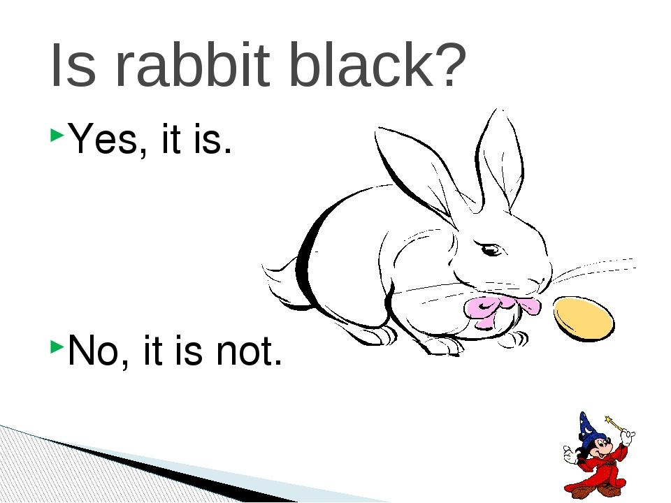 Yes, it is. No, it is not. Is rabbit black?