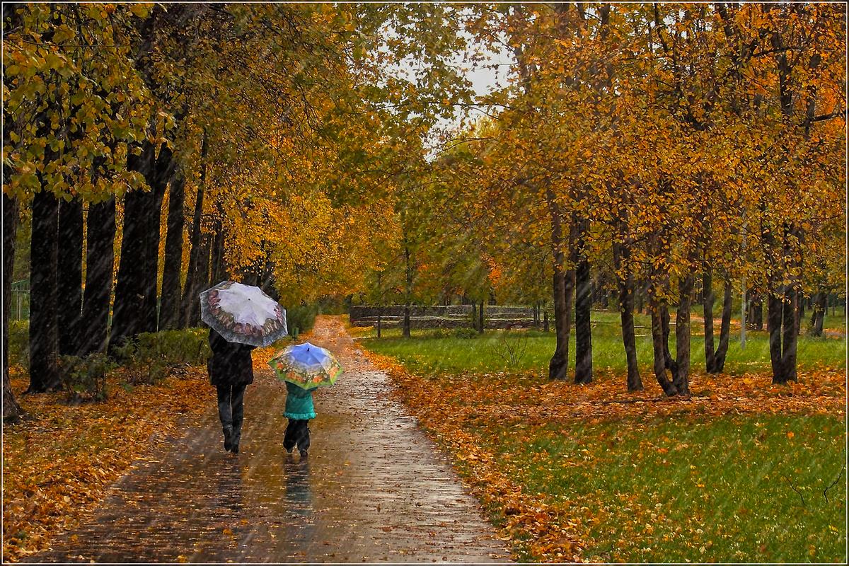 осенний дождливый день фото этот год