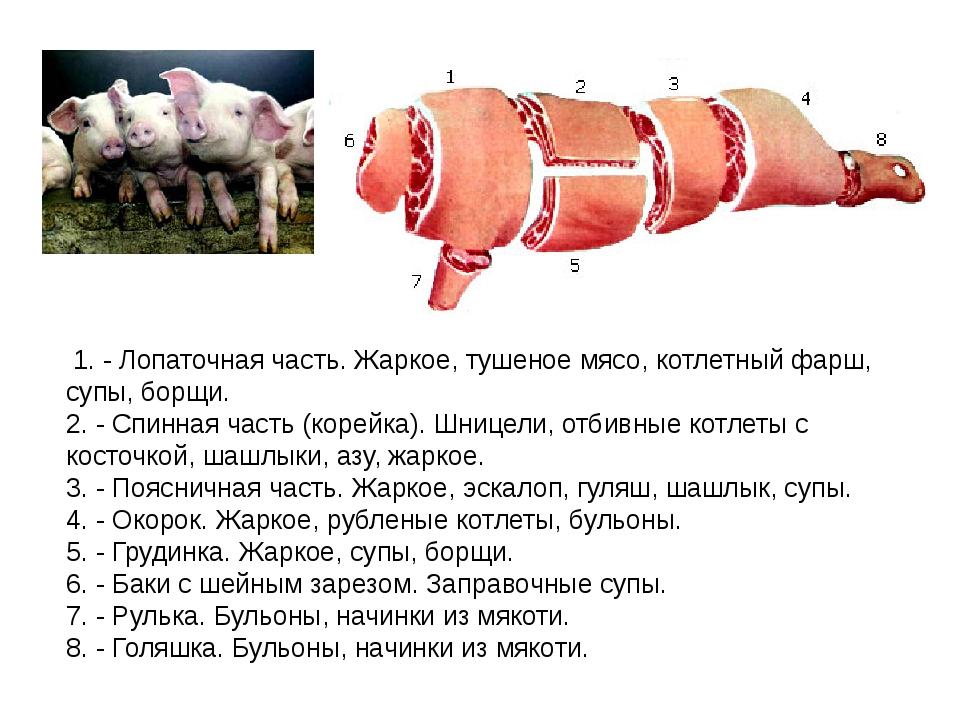 1. - Лопаточная часть. Жаркое, тушеное мясо, котлетный фарш, супы, борщи. 2....