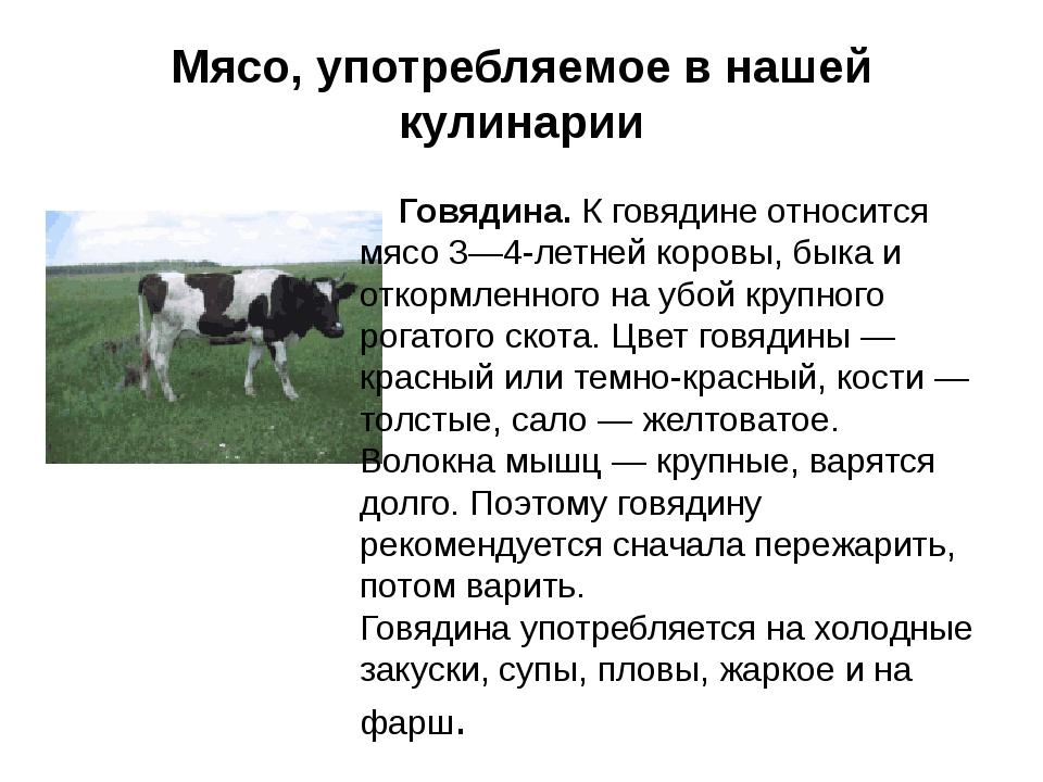 Мясо, употребляемое в нашей кулинарии Говядина.К говядине относится мясо 3—4...
