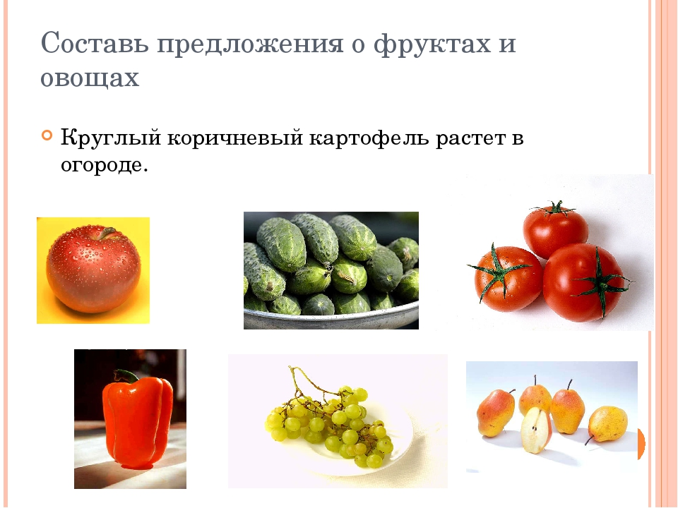 Составь предложения о фруктах и овощах Круглый коричневый картофель растет в...