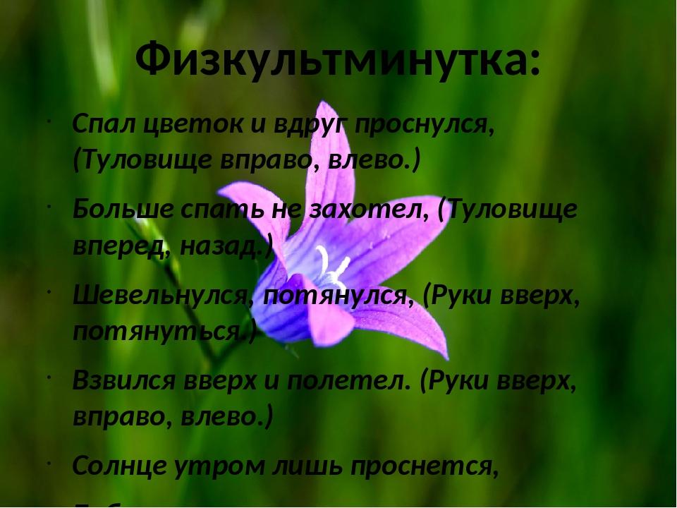 Физкультминутка: Спал цветок и вдруг проснулся, (Туловище вправо, влево.) Бол...
