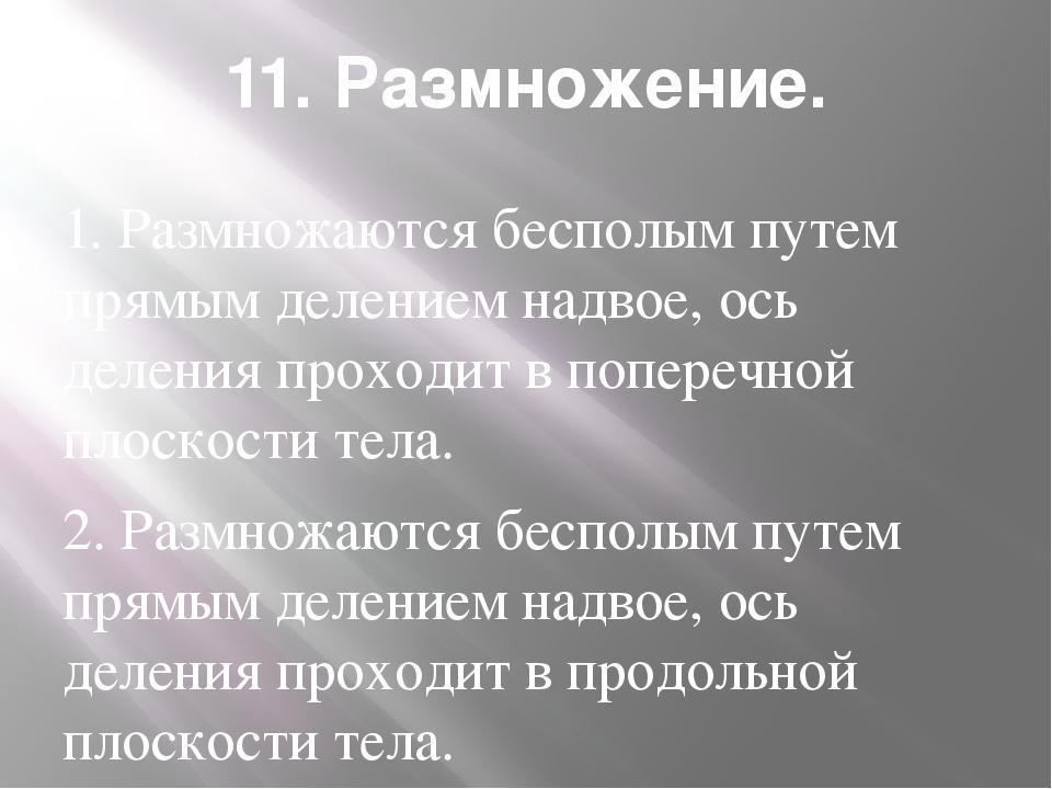 11. Размножение. 1. Размножаются бесполым путем прямым делением надвое, ось д...