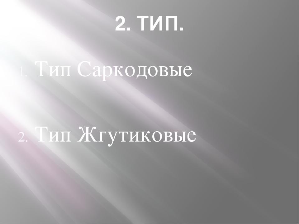 2. ТИП. Тип Саркодовые Тип Жгутиковые Тип Инфузории