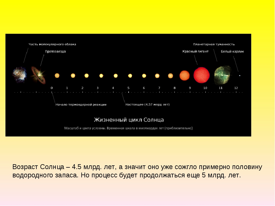 Возраст Солнца – 4.5 млрд. лет, а значит оно уже сожгло примерно половину во...
