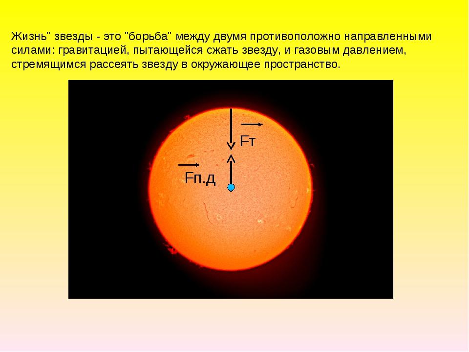 """Жизнь"""" звезды - это """"борьба"""" между двумя противоположно направленными силами:..."""