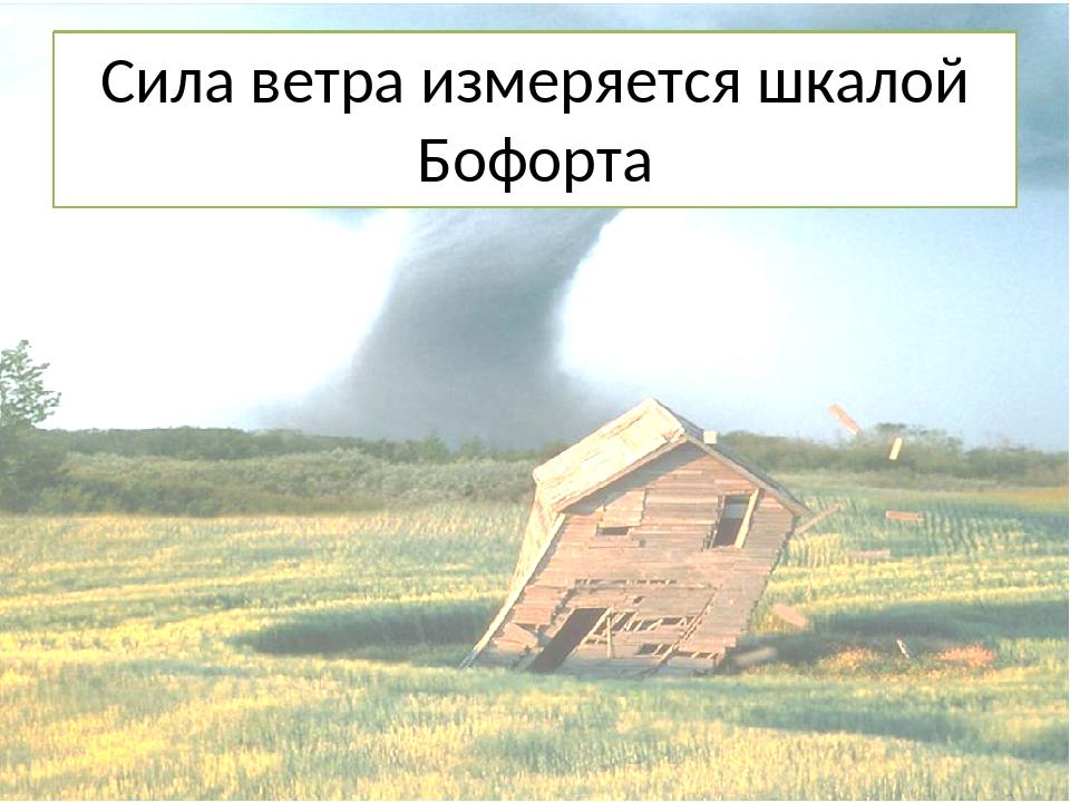 Сила ветра измеряется шкалой Бофорта