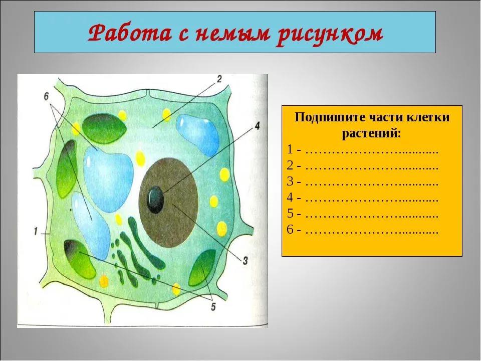 hello_html_3e745549.jpg
