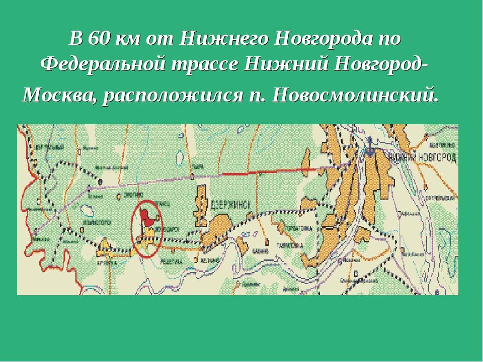 В 60 км от Нижнего Новгорода по Федеральной трассе Нижний Новгород- Москва, р...