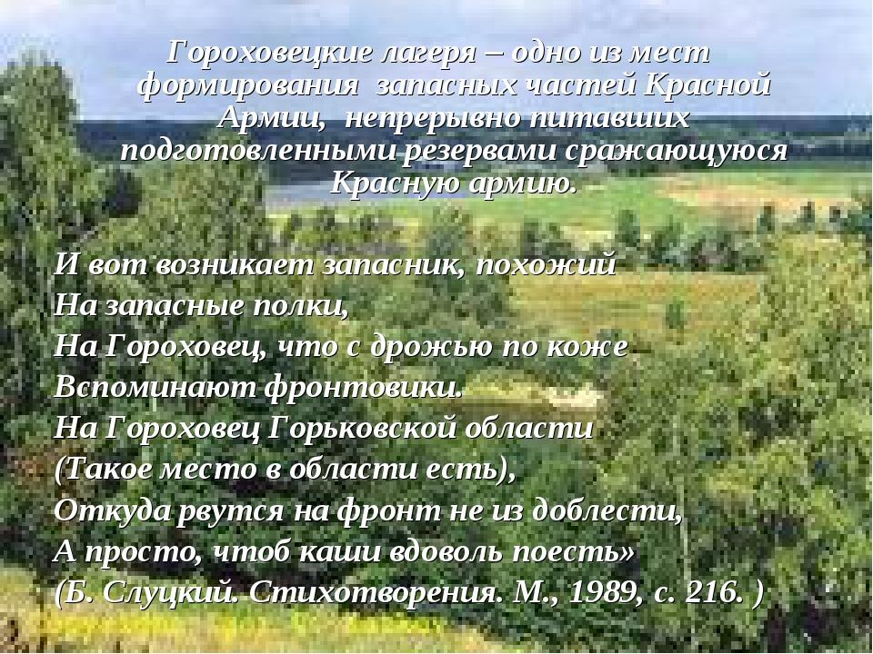 Гороховецкие лагеря – одно из мест формирования запасных частей Красной Арми...