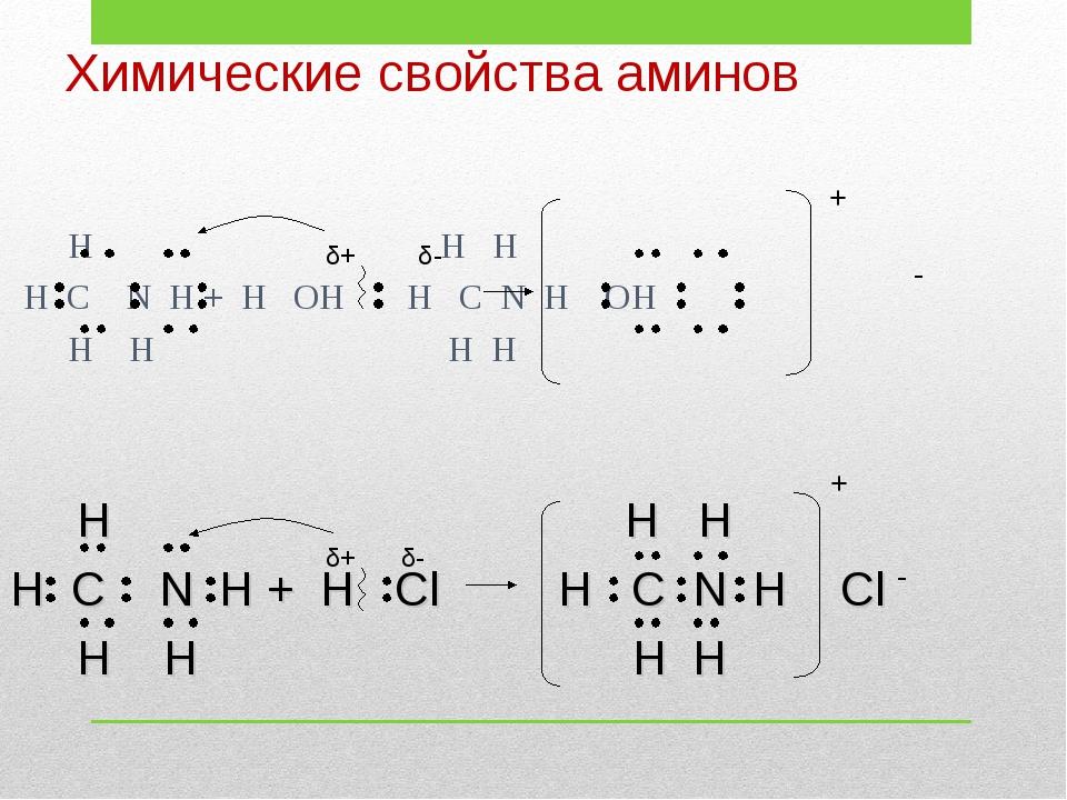 Химические свойства аминов H H H H C N H + H OH H C N H OH H H H H δ+ δ- - +...