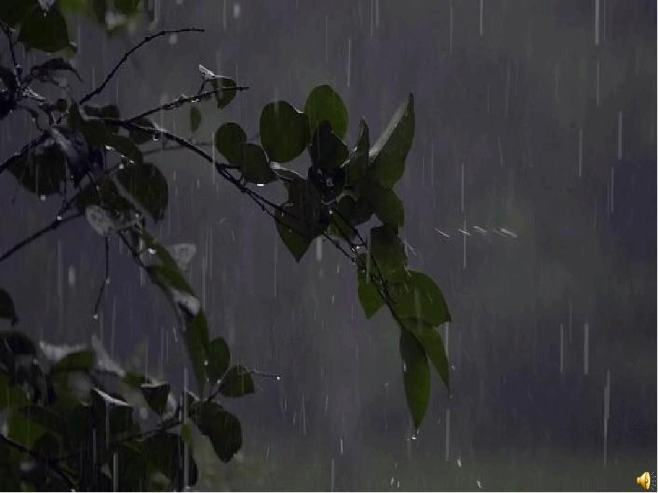 Живой дождь в картинках