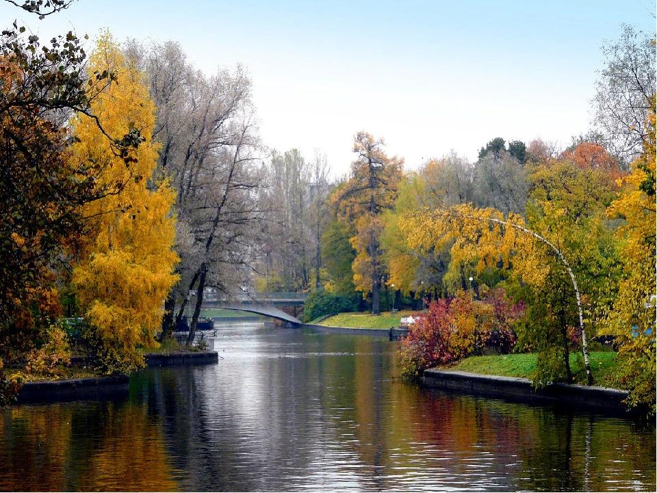 завтрак природа санкт-петербурга в картинках или велотуфли крайне