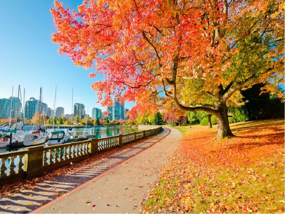 рассказываю, как осень в городе в картинках нужно знать