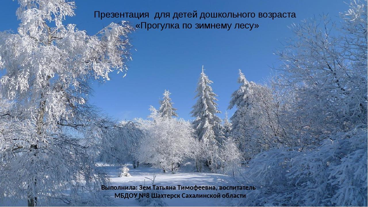 Прогулка по зимнему лесу стихи