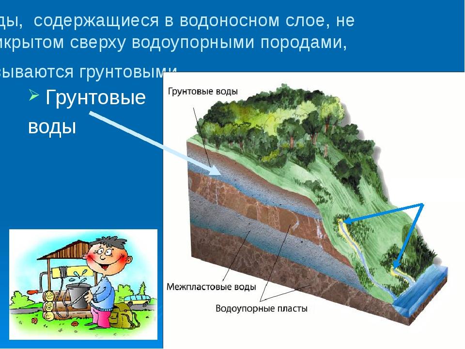 Воды, содержащиеся в водоносном слое, не прикрытом сверху водоупорными порода...