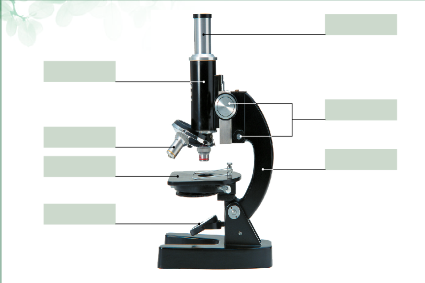микроскоп части картинки декор
