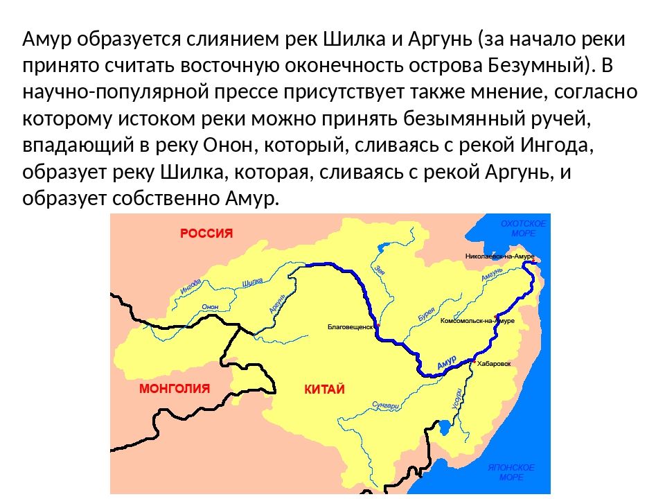 Амур образуется слиянием рек Шилка и Аргунь (за начало реки принято считать в...