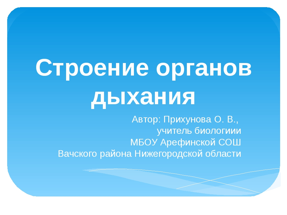Строение органов дыхания Автор: Прихунова О. В., учитель биологиии МБОУ Арефи...