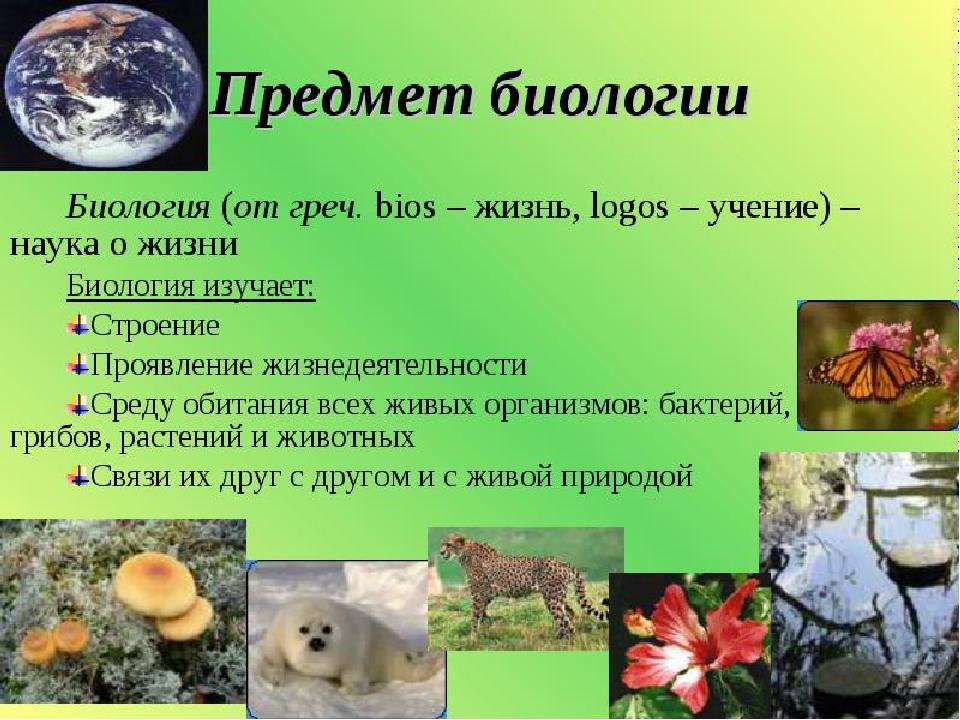 Картинки на тему наука биология