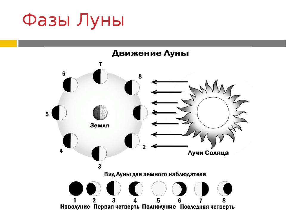 Анимация луны по мере ее прохождения через фазы