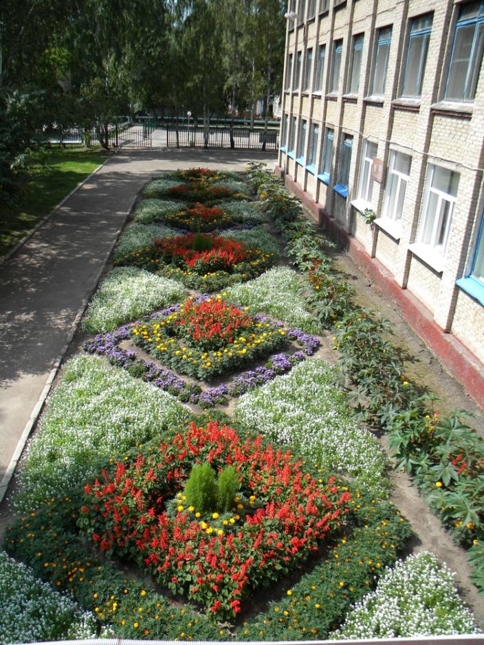 Фото оформления клумб в учебных заведениях перед собой