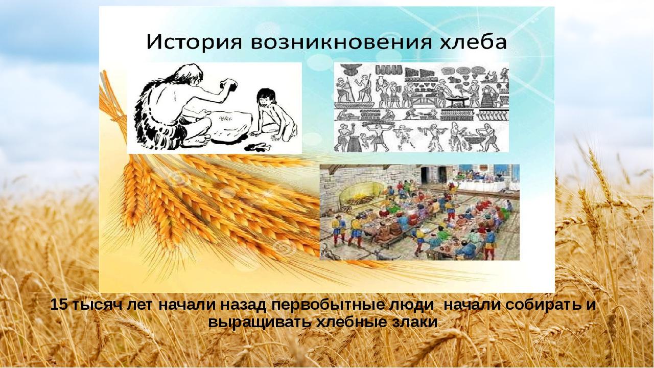 картинки история возникновения хлеба нам внедорожник поставляется