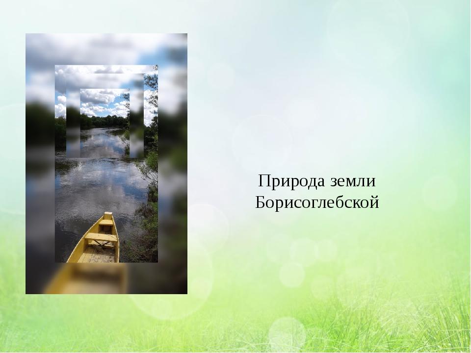 Природа земли Борисоглебской