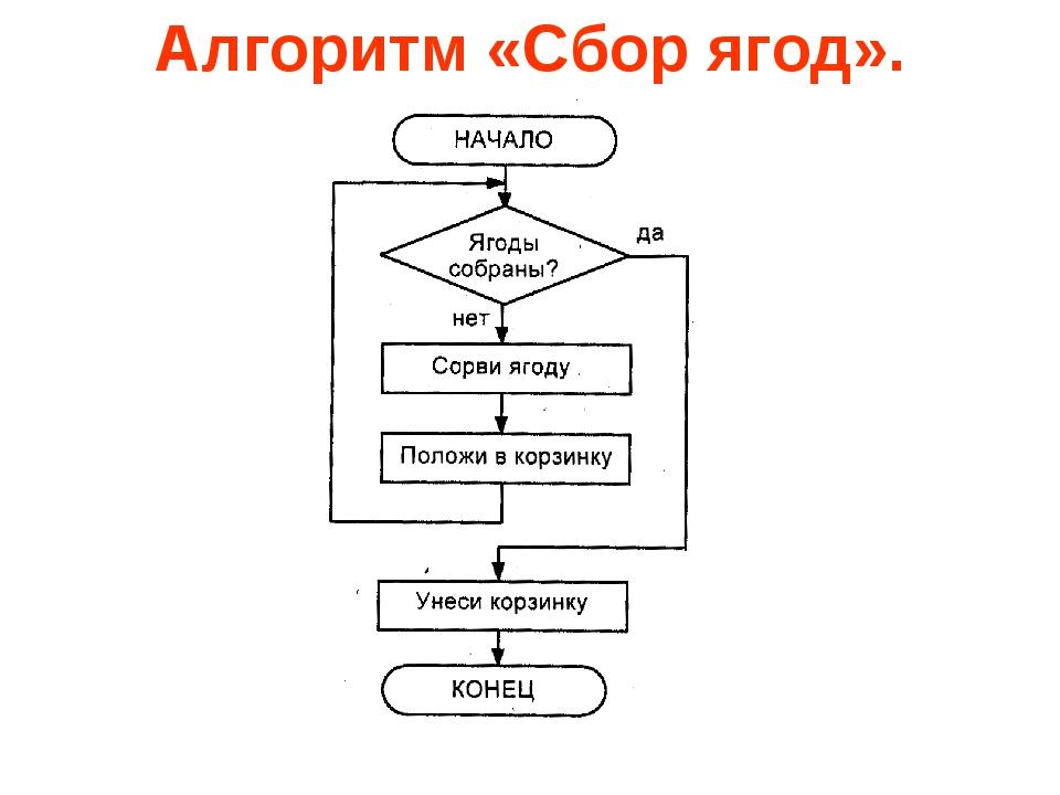 Алгоритм «Сбор ягод».