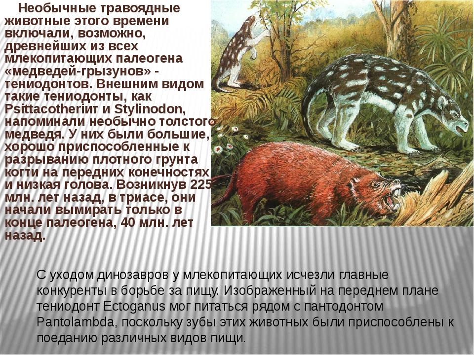 Необычные травоядные животные этого времени включали, возможно, древнейших и...