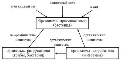 hello_html_55418ba0.jpg