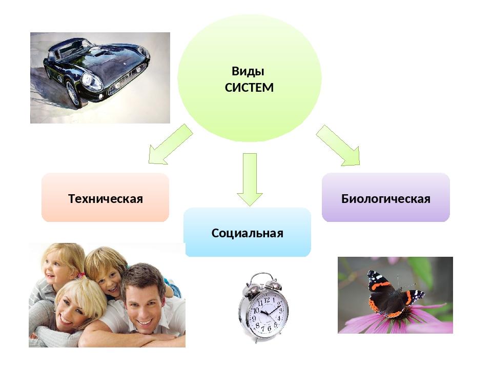 Виды СИСТЕМ Техническая Социальная Биологическая