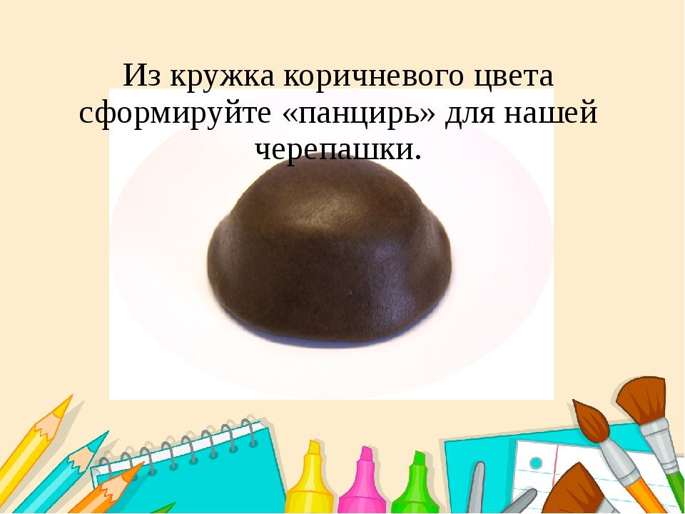 Из кружка коричневого цвета сформируйте «панцирь» для нашей черепашки.