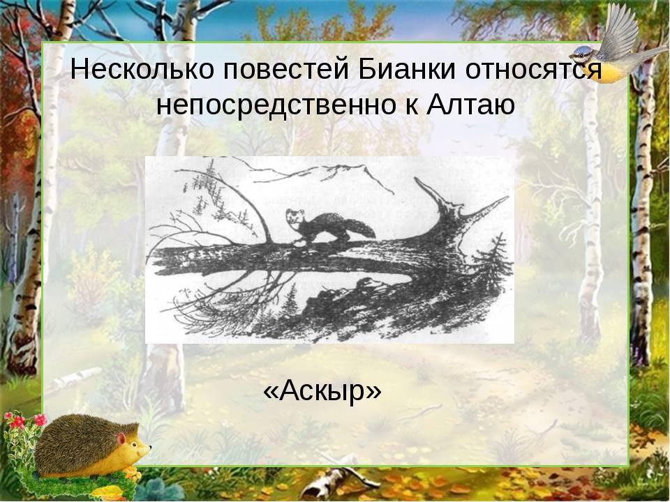 Несколько повестей Бианки относятся непосредственно к Алтаю «Аскыр»