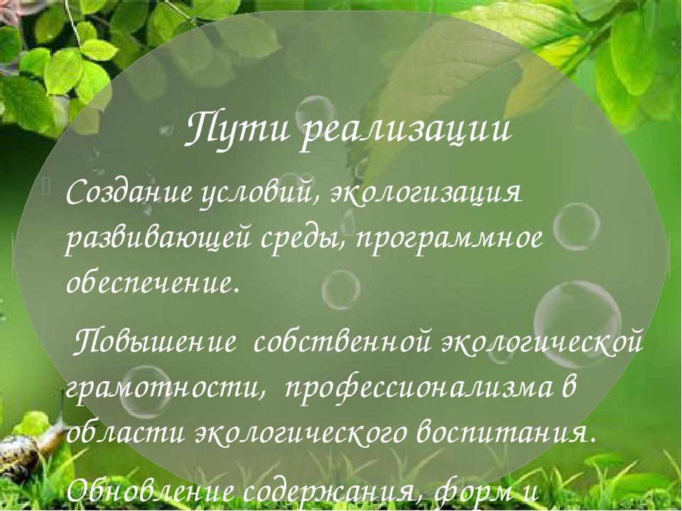 Пути реализации Создание условий, экологизация развивающей среды, программно...