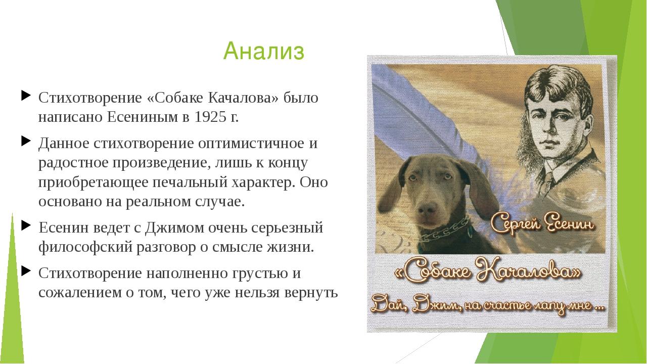 Картинка к стиху собаке качалова