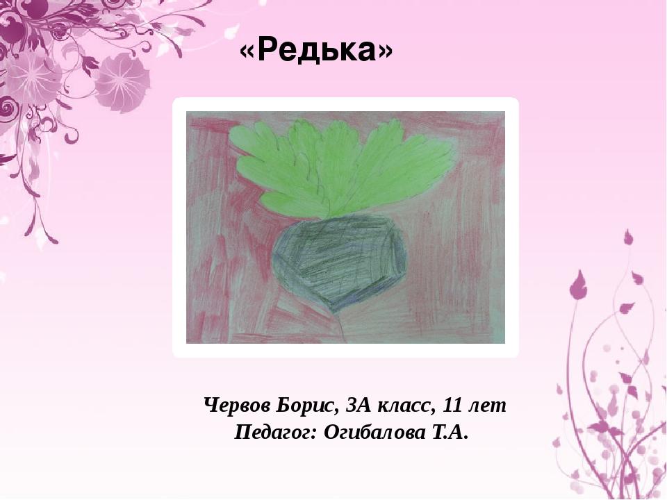 «Редька» Червов Борис, 3А класс, 11 лет Педагог: Огибалова Т.А.