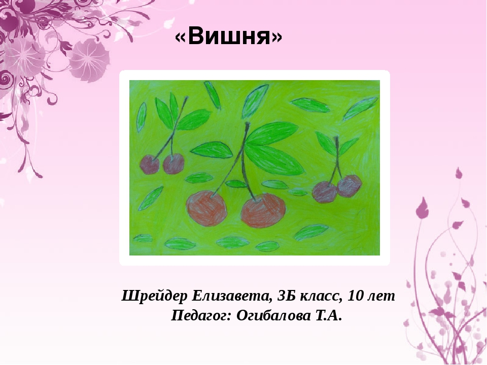 «Вишня» Шрейдер Елизавета, 3Б класс, 10 лет Педагог: Огибалова Т.А.