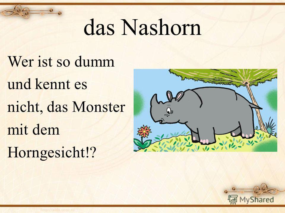 споре постер про животных на немецком боями хари
