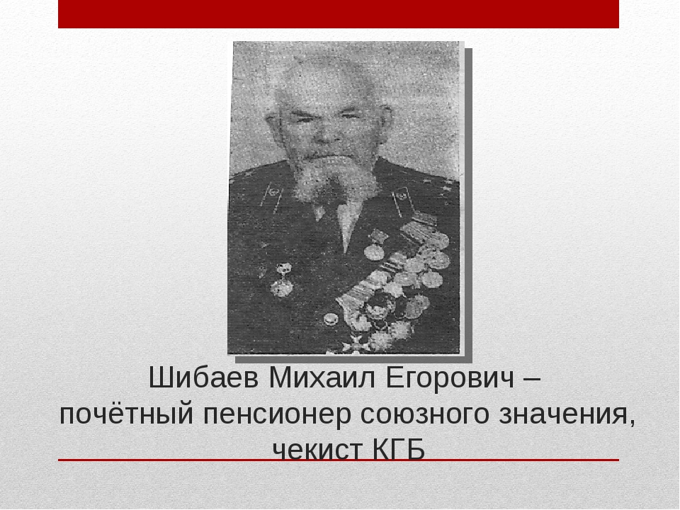Шибаев Михаил Егорович – почётный пенсионер союзного значения, чекист КГБ