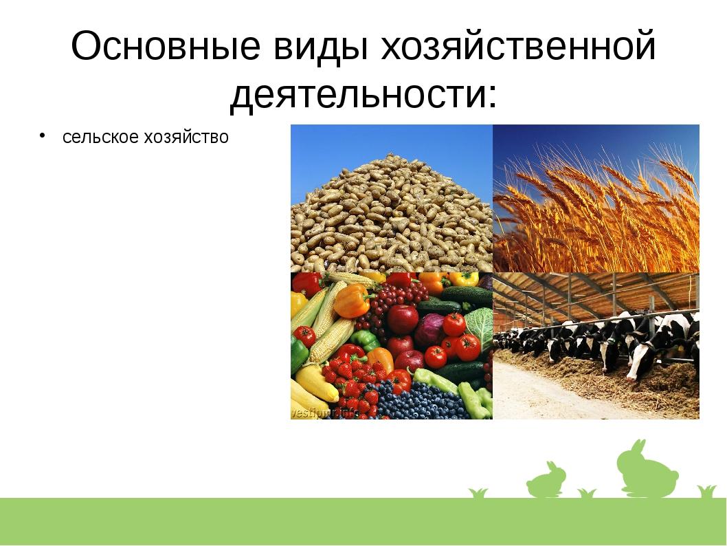 Основные виды хозяйственной деятельности: сельское хозяйство