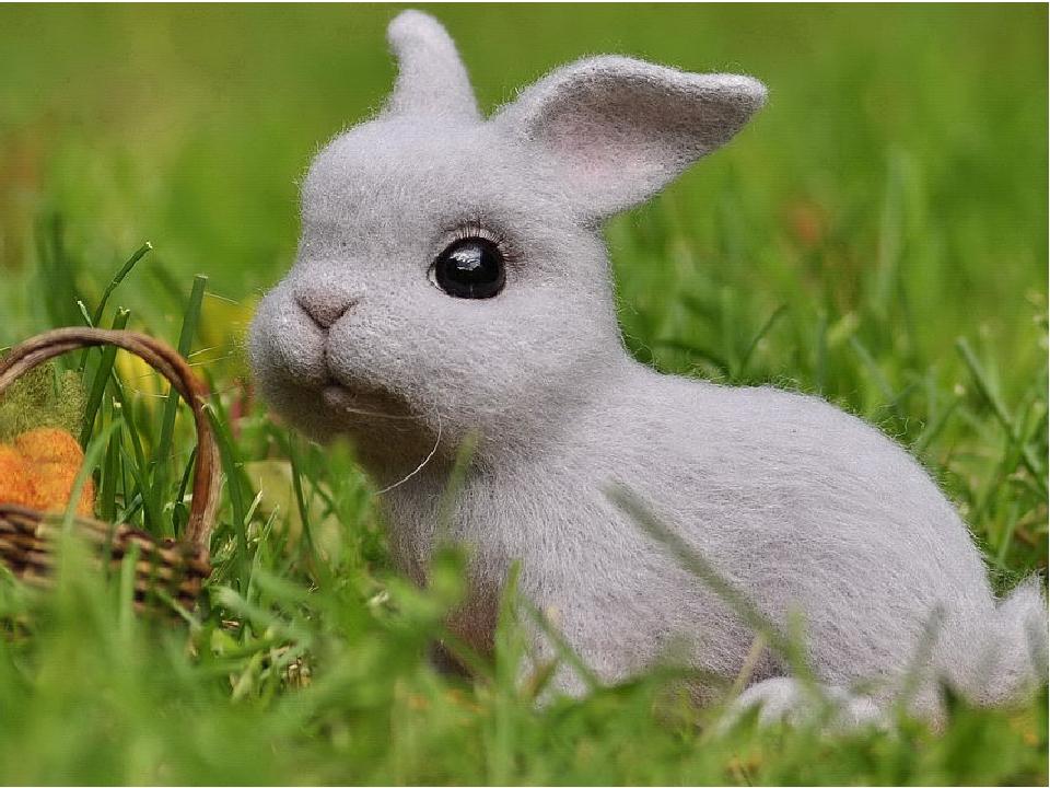картинка как валять зайца тут