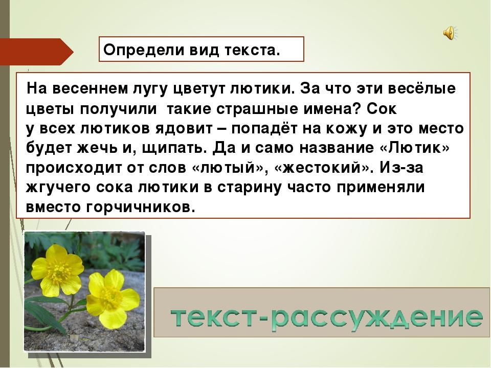 Определи вид текста. На весеннем лугу цветут лютики. За что эти весёлые цветы...