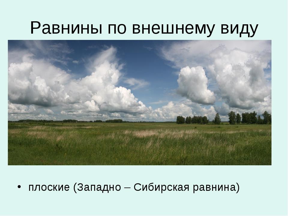 Равнины по внешнему виду плоские (Западно – Сибирская равнина)