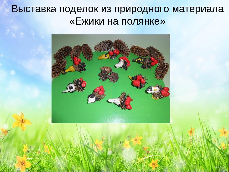 Выставка поделок из природного материала «Ежики на полянке»