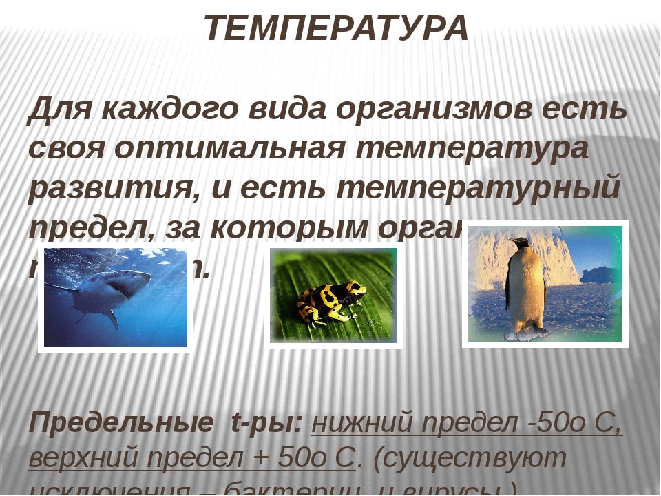 ТЕМПЕРАТУРА Для каждого вида организмов есть своя оптимальная температура раз...