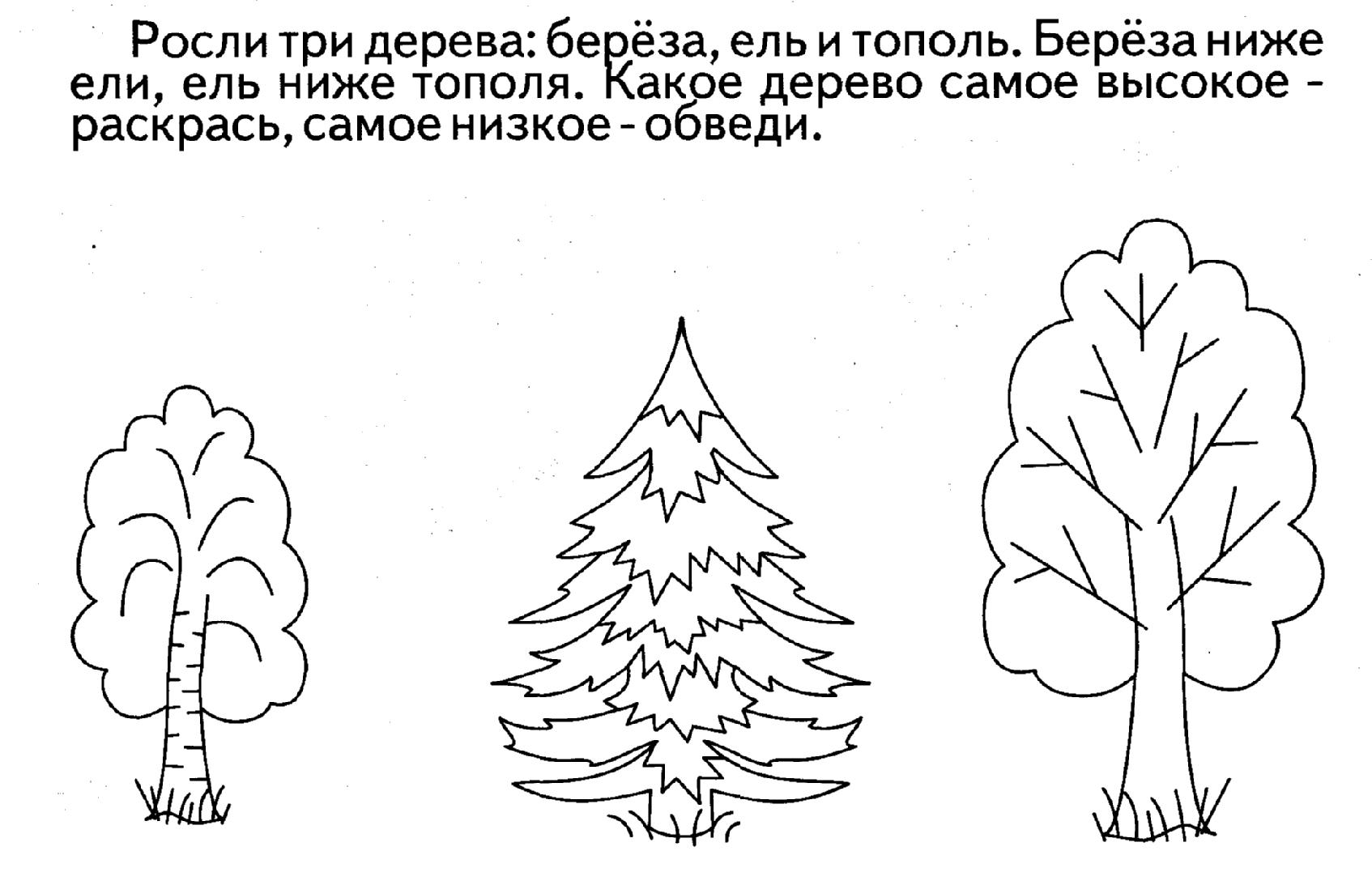 картинки с контурным изображением деревьев универсальный пошаговый рецепт